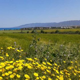 Latchi and Polis and the incredible Chrysochous Bay on the Northwest coast of Cyprus